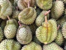 Durian, le fruit asiatique du sud-est Image stock
