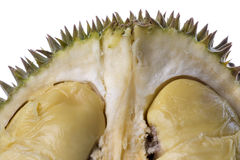 durian makro Obrazy Stock