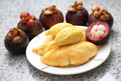 Durian And Mangosteen Royalty Free Stock Image