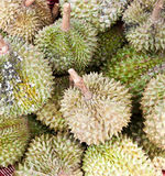 Durian in market Stock Photo