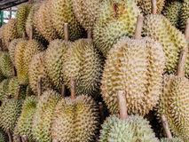 Durian in the market Royalty Free Stock Image