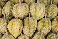 Durian in market Stock Images