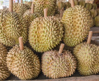 Durian in the market Royalty Free Stock Images