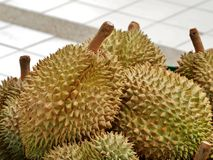 Durian in market Royalty Free Stock Photography