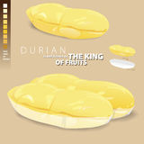 Durian is meaning of the king of Thai fruits. Stock Photography