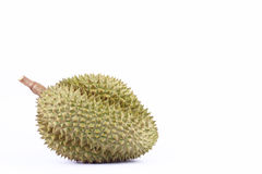 Durian  mon thong is king of tropical fruits durian   on white background healthy durian fruit food isolated close up Royalty Free Stock Photography