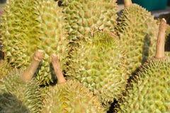 Durian nel canestro Immagine Stock