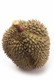 Durian no fundo branco Fotografia de Stock