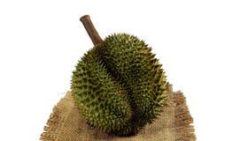 Durian o rei dos frutos foto de stock royalty free