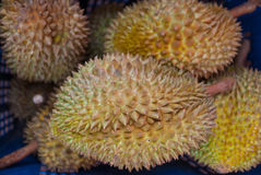 Durian od Tajlandia Obrazy Royalty Free