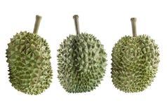 Durian odizolowywający na biały tle Obrazy Royalty Free
