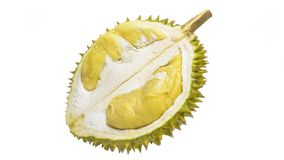 Durian Tropical fruit. Durian is one of the famous tropical fruits, native to Malaysia. Some countries in Southeast Asia grow more, with Thailand the most Royalty Free Stock Photo