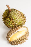 Durian open in display with yellow flesh on fruit. Stock Image