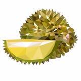 Durian original de fruit illustration stock