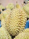 Durian owoc lato Fotografia Royalty Free