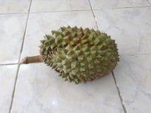 durian owoc odosobniona fotografia tropikalna obraz royalty free