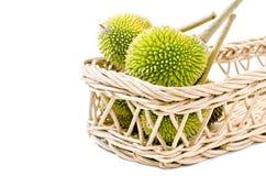 Durian på korgen, konung av isolerade frukter Arkivbilder