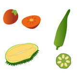 Durian, persimmon and okra isolated on white background. Editable and design suitable  illustration. Royalty Free Stock Photography