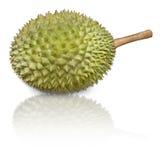 Durian pronomen som konung av frukter Royaltyfri Foto