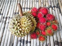 Durian and rambutans of sweet and delicious were king of Fruits stock photography