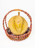 Durian in Rattan Basket Stock Image