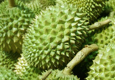 Durian rind background Royalty Free Stock Photography