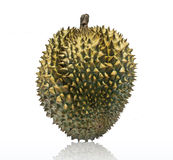 Durian, roi de fruit Photographie stock libre de droits