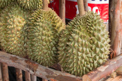 Durian, roi de fruit Images libres de droits