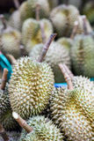 Durian sell in Thai market Royalty Free Stock Photos