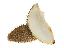 Durian Shell Stock Photos
