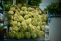 Durian shop. Road side mobile durian shop Stock Photography