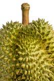 Durian-siamesische Frucht Lizenzfreies Stockfoto