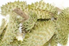 Durian skorupa isoleted na białym tle Fotografia Stock