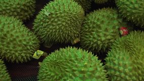 Durian sold in supermarket stock footage video stock video footage