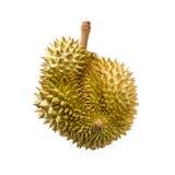 Durian som isoleras på vit bakgrund Royaltyfri Bild