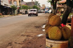 Durian in spiky shell. Java Royalty Free Stock Photos