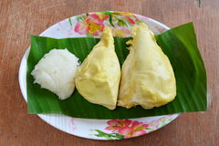 Durian and sticky rice on banana leaf Royalty Free Stock Image