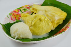 Durian and sticky rice dressing coconut milk Royalty Free Stock Photo