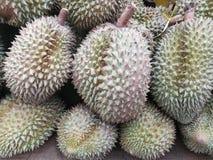 Durian tailandese fotografia stock libera da diritti