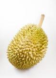 Durian in Tailandia Fotografia Stock Libera da Diritti