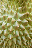 Durian tekstura Obraz Stock