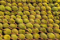 Durian. The Texture of Durian in the market Royalty Free Stock Image