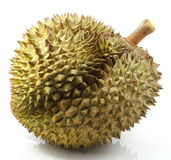 Durian Thai Fruit Royalty Free Stock Images