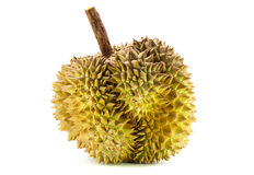 Durian from Thailand. Durians, king of the fruits in Thailand Stock Images