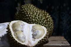 Durian Tropical Fruit cut in half wide open  on dark background. portrait. Durian Tropical Fruit Durio cut in half wide open  on dark background. portrait Royalty Free Stock Photo