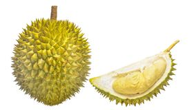 Durian Tropical fruit. Durian is one of the famous tropical fruits, native to Malaysia. Some countries in Southeast Asia grow more, with Thailand the most Royalty Free Stock Photos