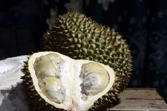 Durian Tropical Fruit cut in half wide open isolated on dark background. portrait. Durian Tropical Fruit Durio cut in half wide open isolated on dark background Stock Photography