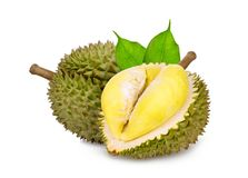 Durian tropical fruit with green leaf isolated on white stock photography
