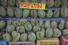 Durian, tropical fruit in market. Royalty Free Stock Image