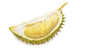 Durian Tropical fruit. Durian is one of the famous tropical fruits, native to Malaysia. Some countries in Southeast Asia grow more, with Thailand the most Stock Image